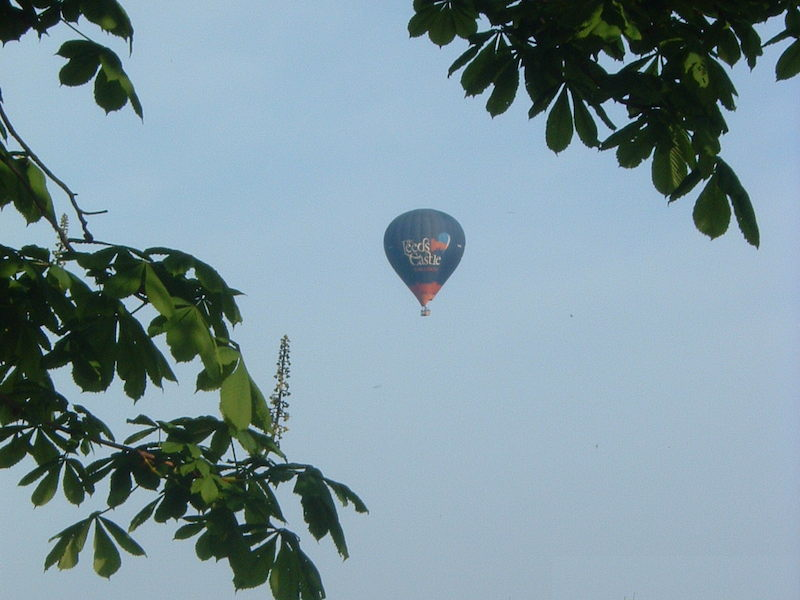 Hot Air Balloons over Applebloom Bed and Breakfast